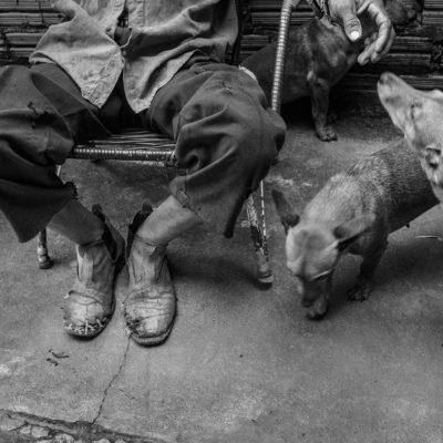 Solino Ferreira de Andrade (10/09/52), 61 anos, casado, 5 filhos, trabalhador rural, paciente de hanseníase em tratamento. Esposa: Douraci Lima de Andrade (25/08/52), 60 anos, casada, 5 filhos, dona de casa.Conhecemos Aldecir Pereira dos Santos, um dos 36 agentes de saúde do município, há 18 anos na profissão, que irá nos ajudar nos próximos dias. Explicamos o projeto para ele e já começamos a visitar alguns pacientes. Vamos até a casa de Solino Ferreira de Andrade, de 61 anos. Ele mora em uma terra a 10 km de Babaçulândia. Chegamos até a casa de Solino com as indicações de Aldecir. Solino já foi vereador de Babaçulândia, mas hoje se dedica ao trabalho em sua terra. Ele estava no campo, plantando mandioca. Nos recebe muito bem e continua fazendo seu trabalho para que André fotografe. Sua esposa, Douraci, é muito simpática e faz um café fresco para as visitas. O casal tem 5 filhos, sendo um deles adotado. A mais nova mora com eles.Solino está no sétimo mês fazendo o tratamento de hanseníase. Percebeu manchas no corpo há 3 anos. Fez o teste no posto de saúde de Babaçulândia, mas o resultado deu negativo. Como as manchas persistiram e ele começou a ter dores nas juntas, foi até o HDT, hospital de referência em Araguaína e saiu de lá com o diagnóstico da hanseníase.O casal também tem uma casa em Babaçulândia. A antiga casa da família foi desapropriada e comprada junto com outras casas da região no final de 2012 pela Ceste (Consórcio Estreito Energia) para a construção da usina hidrelétrica do Estreito (MA). http://www1.folha.uol.com.br/fsp/poder/74583-nova-hidreletrica-afeta-vida-de-moradores.shtml Agradecemos Solino e Douraci pela hospitalidade e nos despedimos. Aldecir nos leva para a casa de um outro paciente, que não rendeu fotos. Combinamos com Aldecir um encontro amanhã para conhecer outros pacientes e seguimos de volta para Araguaína.